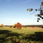 Bullau im Herbst